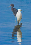WAITING GAME