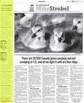TORONTO SUN April 12, 2008