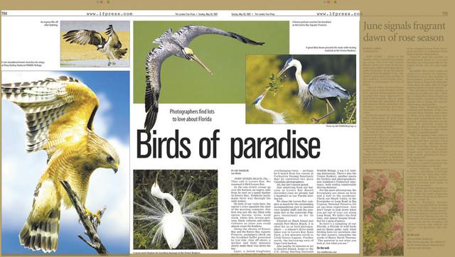LONDON FREE PRESS May 20, 2007